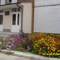 Великодмитровицька амбулаторія