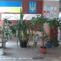 фойє школи