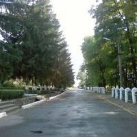 Центральна вулиця села Пантазіївка