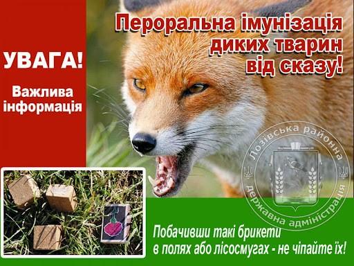 Увага на території  громади  буде проводитись  пероральна імунізація диких м'ясоїдних тварин!!!