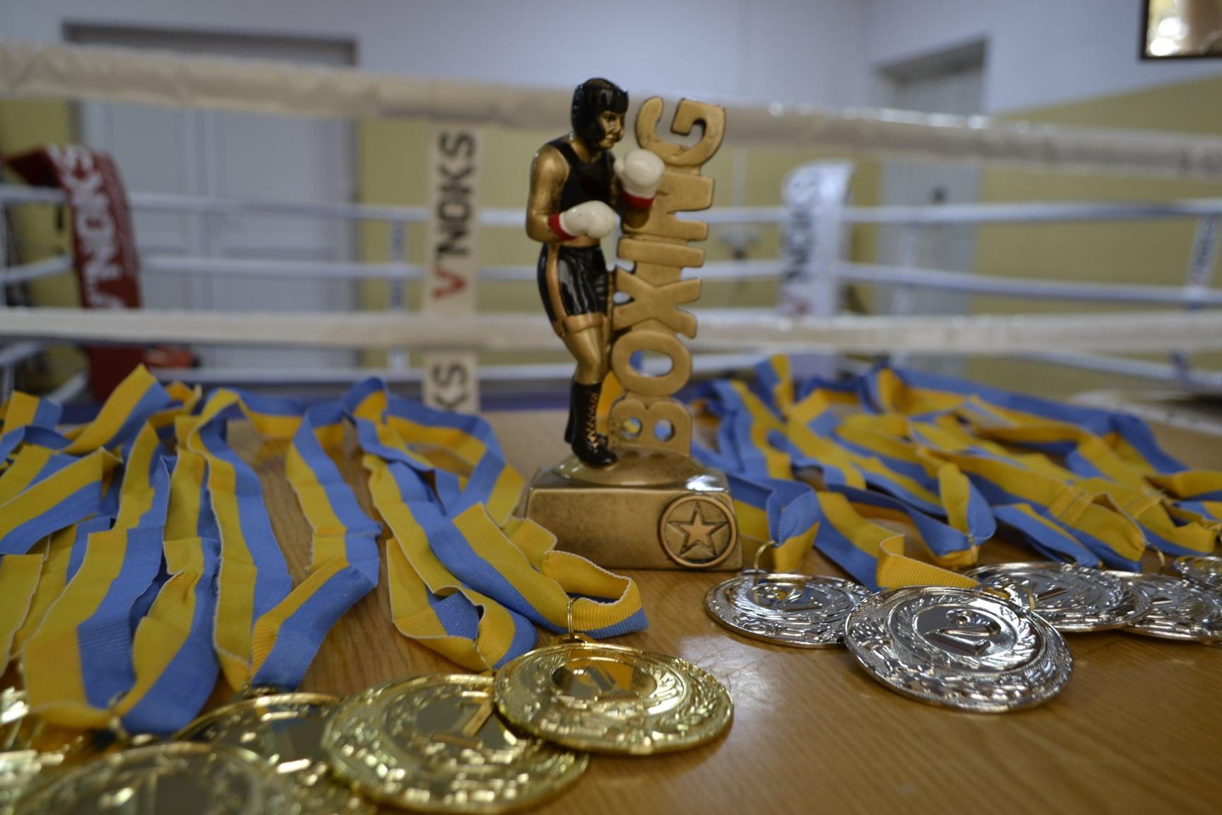 Вперше відбувся турнір з боксу в Попельнастівській громаді