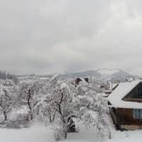 Зима у Славській ОТГ