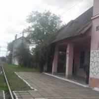 Залазнична станція в Нижанковичах