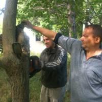 Встановлення дитячих майданчиків в с.Дорошівка