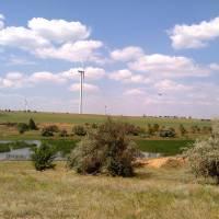 Аджигольський ставок
