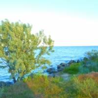 Краєвиди побережжя Дніпро-Бузького лиману  с. Куцуруб