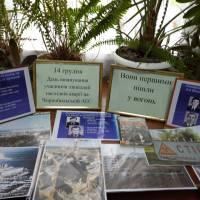 Книжкова виставка у бібліотеці Великоплосківського ОЗО