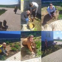 Посадка троянд у Новосавицькому ЗЗСО