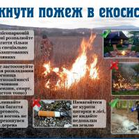 Як уникнути пожеж в екосистемах?