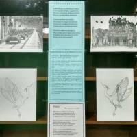 15 лютого - День вшанування учасників бойових дій на території інших держав