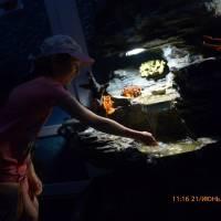 Екскурсійна поїздка для обдарованих учнів Березівської громади