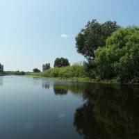 річка Ворскла с.Зарічне