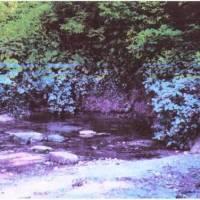 с.Курники. На початку села (зі сторони Лозової), недалеко від річки, б'є два джерела. За словами старожилів, на їх місці колись була церква, після зни