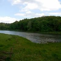 Озеро серед лісу у с.Борщівка