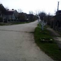 Вулиця в с.Конопківка (3)