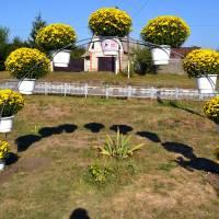 Квіткова арка