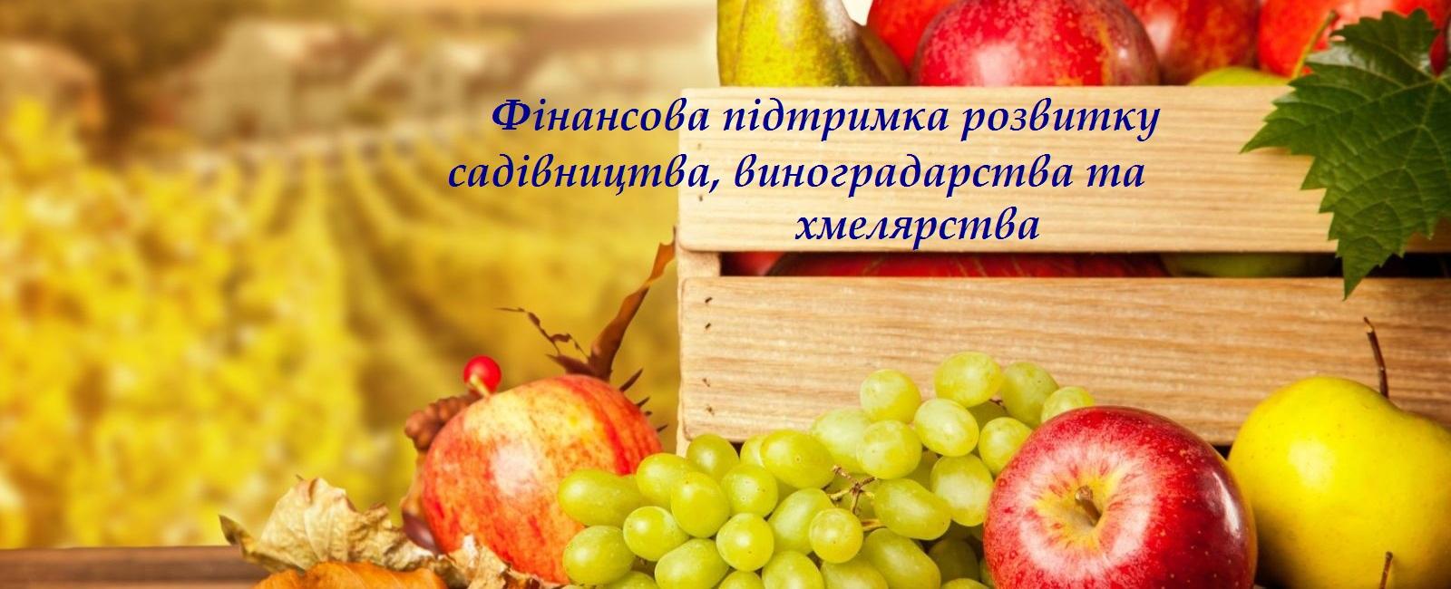 Донецька селищна рада інформує про приймання документів за програмою «Фінансова підтримка розвитку садівництва, виноградарства та хмелярства»