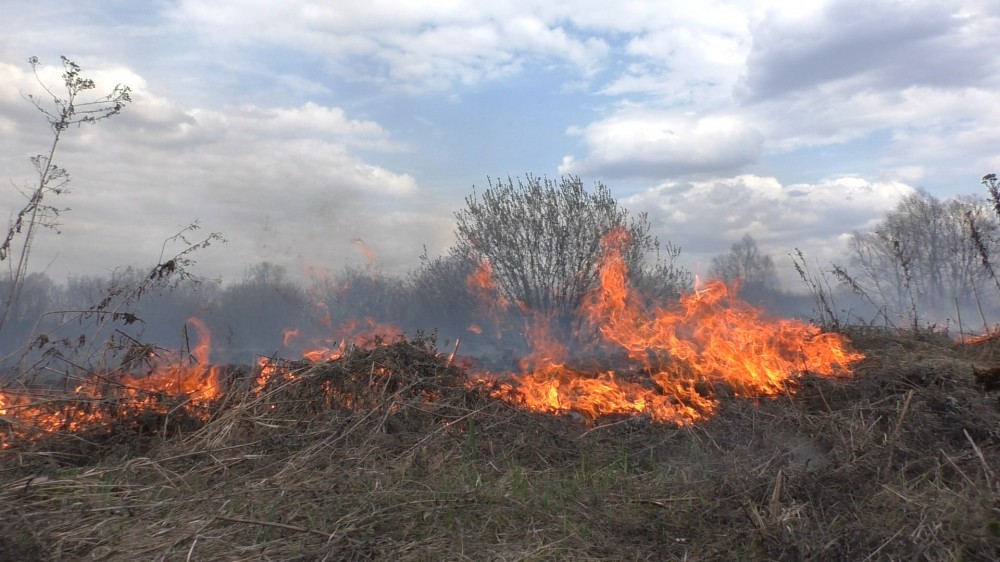 Пожежа в селищі Андріївка