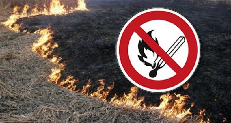 Не паліть суху траву!!! Бережіть природу!
