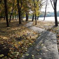 осінній парк, біля ставку, 2017