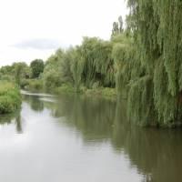 Річка  Каланча