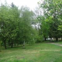 В парку