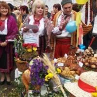 День смт Брилівка