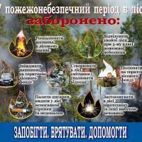 pozhezha-lis-1-29