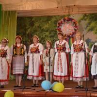 День села Рідкодуби