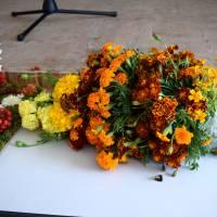 Свято квітів (44)