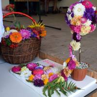 Свято квітів (45)