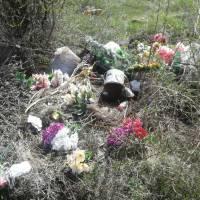 Сміття на кладовищі (12)
