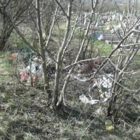 Сміття на кладовищі (14)