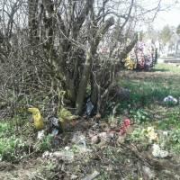 Сміття на кладовищі (2)