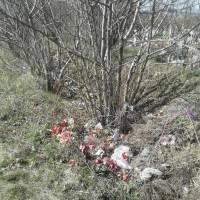 Сміття на кладовищі (20)