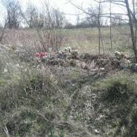 Сміття на кладовищі (24)