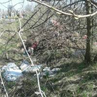 Сміття на кладовищі (3)