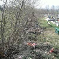 Сміття на кладовищі (4)