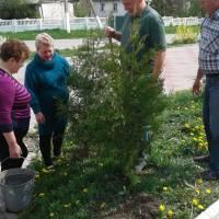 Роботи з благоустрою в Іванківцях (4)