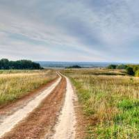 Дорога з Великого Лісу до с. Вишеньки