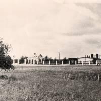 Овочесушильний завод
