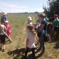Життя пришкільних таборів Іванівської ОТГ