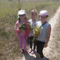 Прогулянка до лісу учнів Іванівської ЗОШ