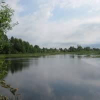 Ставок на річці Коганець
