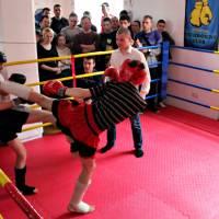 Турнір з боксу та кікбоксингу