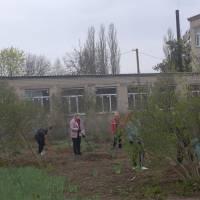 Степанівка
