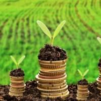 Про встановлення ставок та пільг із сплати земельного податку на 2020 рік