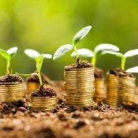 Про встановлення ставок та пільг із сплати земельного податку на 2019 рік