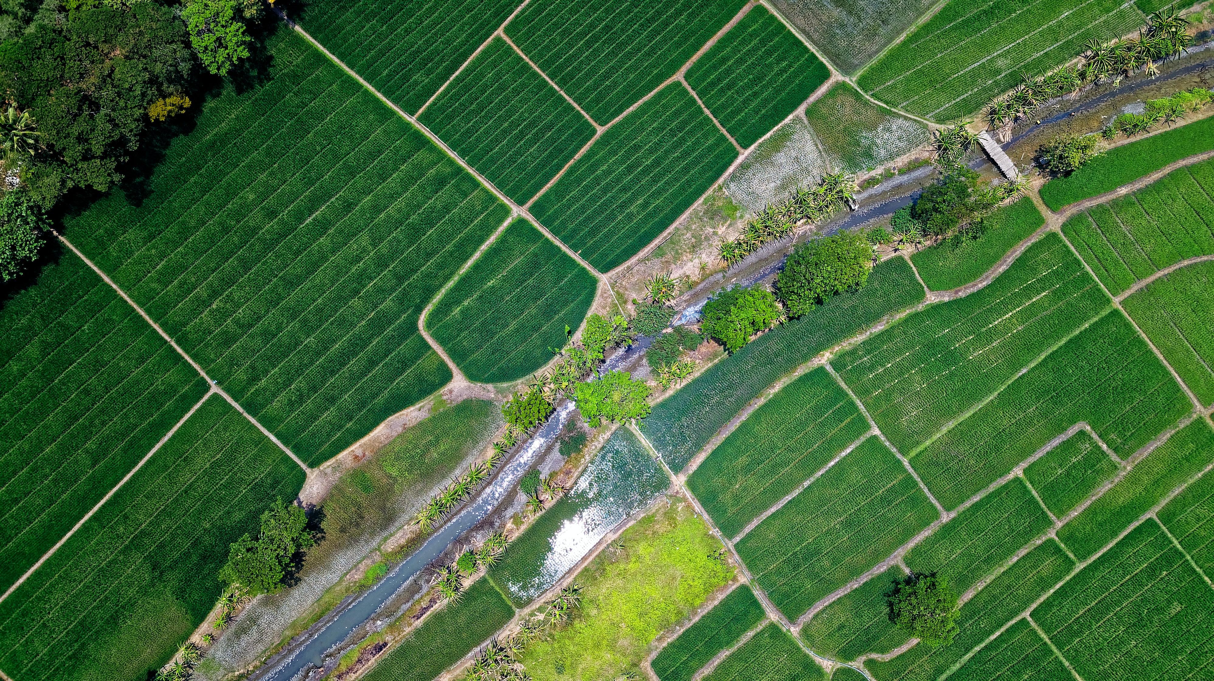 Де фізична особа зможе провести звірку даних земельних ділянок?