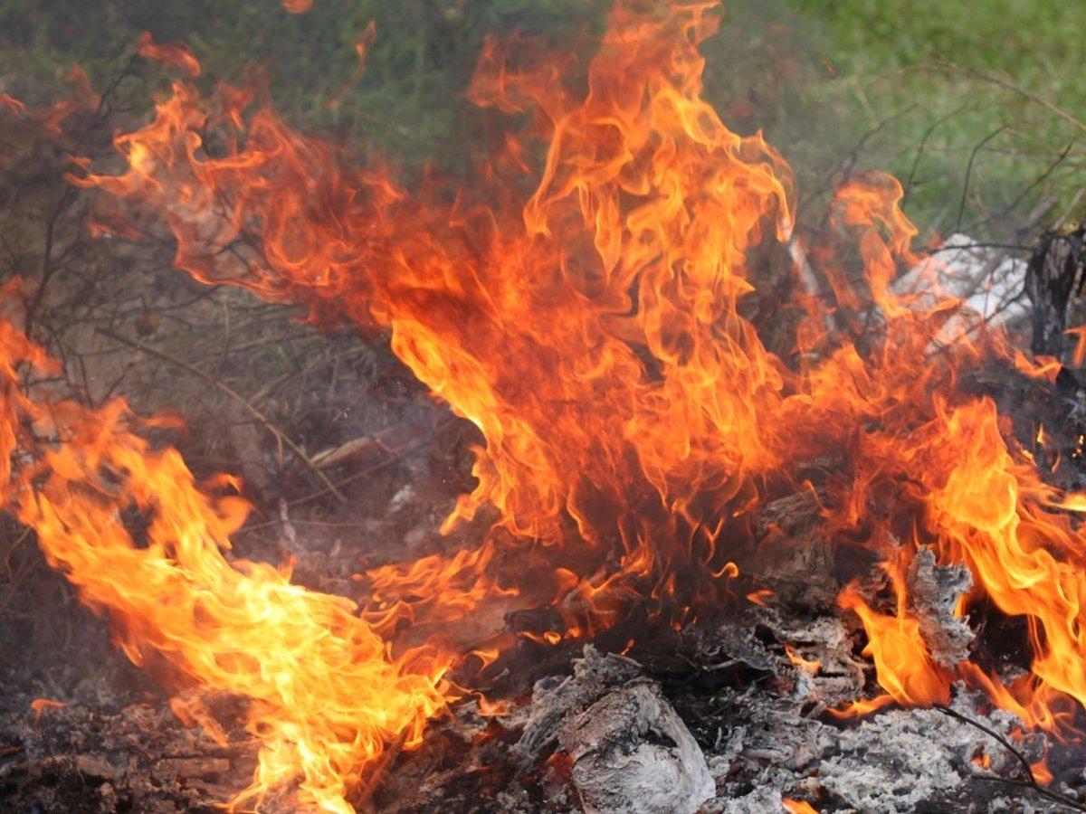 Самовільне спалювання сухої рослинності – поза законом!